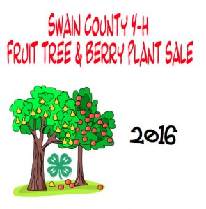 Cover photo for Swain County 4-H 2016 Fruit Tree & Berry Plant Sale