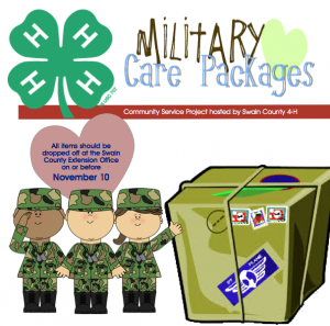 Cover photo for Military Care Packages 4-H Service Project