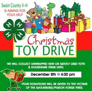 Cover photo for 4-H Toy Drive to Help Victims of East Tennessee Fires