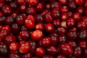 Cover photo for The Merry Cranberry