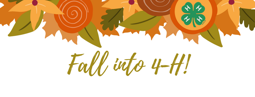 Fall into 4-H banner