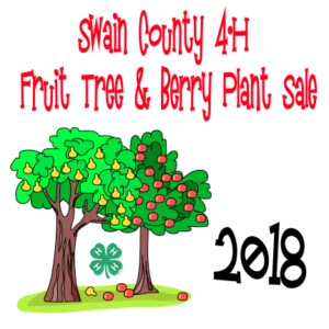 Cover photo for 2018 Swain County 4-H Fruit Tree & Berry Plant Sale