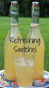 Cover photo for Switchel (Haymakers Punch): Nature's Healthy Gatorade