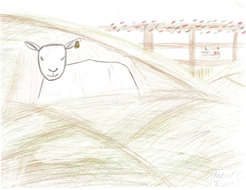 Kadin Taylor drawing image