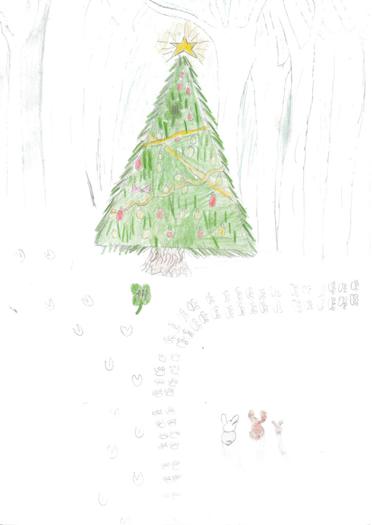 Reece Cloer drawing image