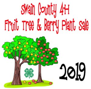 Swain County 4-H Fruit Tree and Berry Sale poster