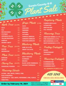 2021 4-H Plant Sale Flyer
