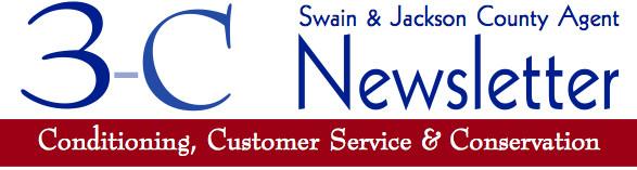 3C Newsletter banner