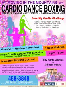 Cardio Dance Boxing flyer