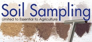 Cover photo for Soil Testing Limited to Essential to Agriculture