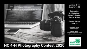 Cover photo for NC 4-H Photo Contest 2020