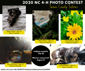 Cover photo for Swain County Youth Photo Entries in the 2020 4-H Photography Contest