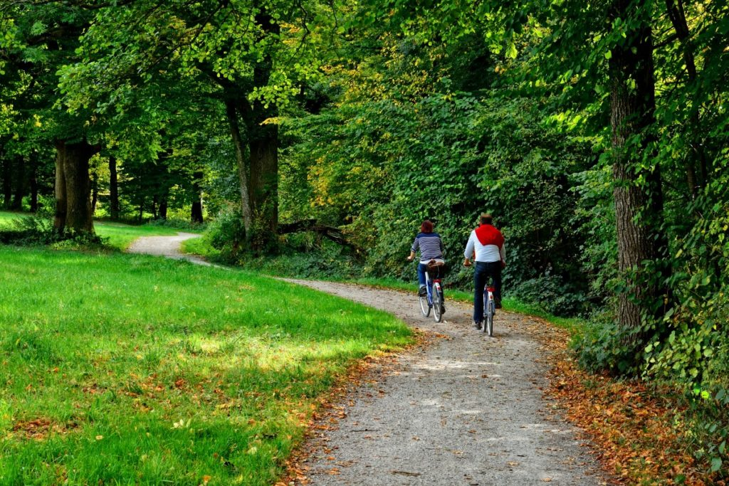 Two people on bicycles on wooded trail