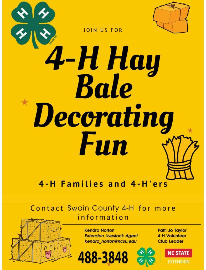 Hay Bale Decorating Fun