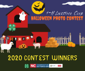 2020 Halloween Photo Contest Winners
