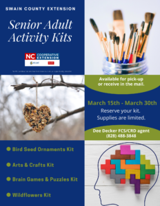 Senior Adult Activity Kits
