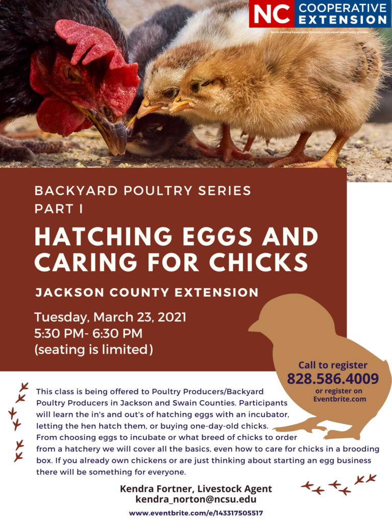 Hatching Eggs and Caring for Chicks workshop flyer
