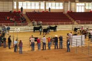 Cover photo for WNC Jr Beef Spring Fling