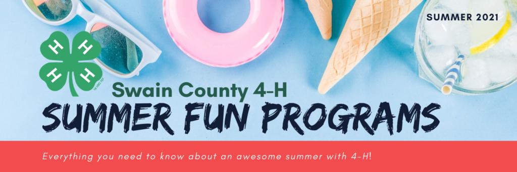 Summer Fun Programs 2021 cover