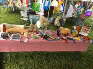 adult farm produce exhibit